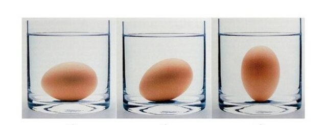 Check if the egg is still good
